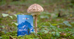 Dnevnik za vse aktivne Slovence