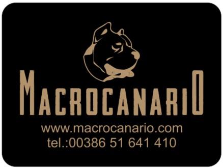 Macrocanario
